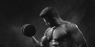 Regras para construir tecido muscular