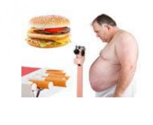 XS Natural Fat Burner - ingredientes - funciona - como tomar