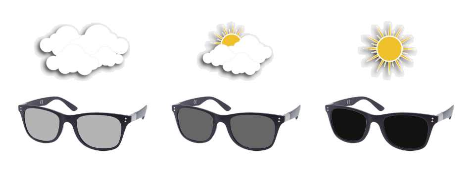 SunFun Glasses - celeiro