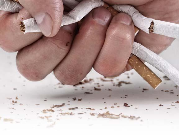Nicotine Free - onde comprar - em Portugal