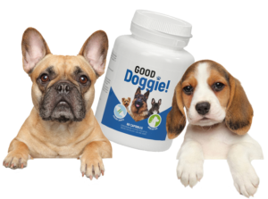 Good Doggie - funciona - ingredientes - como tomar
